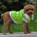 Hundejacke mit abnehmbarer Kapuze - grün, XS