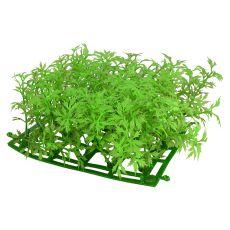 Künstliche Aquariumpflanze CP03-15P - 15 x 15 cm