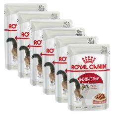 Royal Canin INSTINCTIVE 6 x 85 g - Beutel
