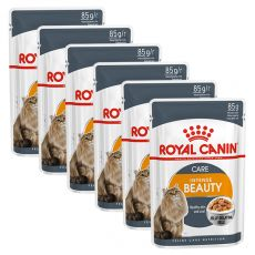 Royal Canin Intense BEAUTY in Jelly 6 x 85g - Gelee in Beutel