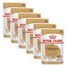 ROYAL CANIN ADULT CHIHUAHUA 6 x 85 g - Beutel