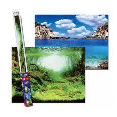 Hintergrund für Aquarien PLANTS/OCEANS S - 60 x 30cm