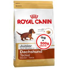 ROYAL CANIN JUNIOR Dachshund 1kg + 0,5kg GRATIS