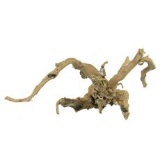 Aquarium Wurzel Old Twity Wood - 47 x 27 x 21 cm