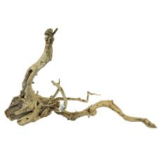 Aquarium Wurzel Old Twity Wood - 51 x 55 x 35 cm