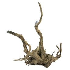 Aquarium Wurzel Old Twity Wood - 41 x 29 x 54 cm
