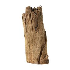 Aquarium Wurzel DRIFT WOOD - 11,5 x 5 x 25 cm