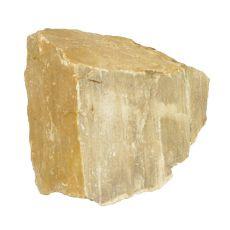 Stein Petrified Stone M 12 x 11 x 10 cm für Aquarium
