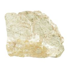 Stein Grey Luohan Stone M 15 x 9,5 x 12 cm für Aquarium