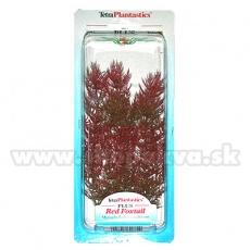 Myriophyllum heterophyllum (Red Foxtail) - Pflanze Tetra 23 cm, M