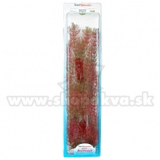 Myriophyllum heterophyllum (Red Foxtail) - Pflanze Tetra 38 cm, XL