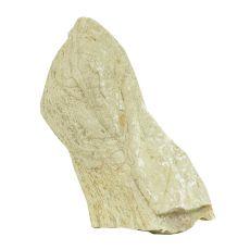 Stein Grey Luohan Stone M 11 x 5 x 17 cm für Aquarium