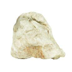 Stein Grey Luohan Stone M 9 x 6 x 7 cm für Aquarium