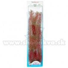 Myriophyllum heterophyllum (Red Foxtail) - Pflanze Tetra 46 cm, XXL