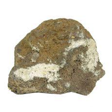 Stein Black Volcano Stone L 21 x 13 x 16 cm für Aquarium