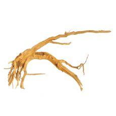 Aquarium Wurzel Cuckoo Root - 32 x 20 x 10 cm