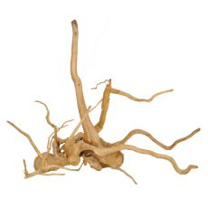 Aquarium Wurzel Cuckoo Root - 48 x 20 x 45 cm