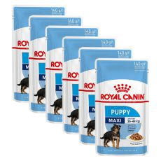Nassfutter Royal Canin Maxi Puppy 6 x 140 g
