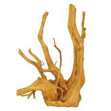 Aquarium Wurzel Cuckoo Root - 32 x 17 x 48 cm
