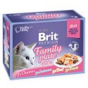 Kapsičky BRIT Premium Cat Delicate Fillets in Jelly Family Plate 12 x 85 g