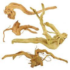 "Aquarium Wurzel Cuckoo Root ""STANDARD"", 20 - 30 cm"