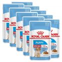 Nassfutter Royal Canin Medium Puppy 10 x 140 g
