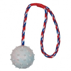 Hundespielzeug 6 cm Ball mit Seil