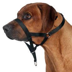 Trainingsgeschirr für Hunde - M, 27 cm