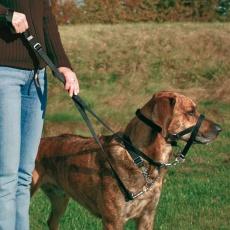 Trainingsgeschirr für Hunde - XL, 46 cm
