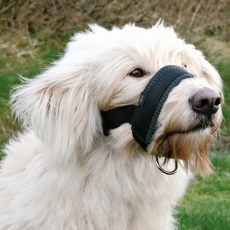 Maulschlaufe für Hunde - XL
