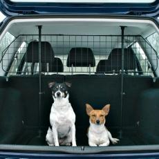 Schutzgitter für Auto, schwarz