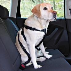 Hundesicherheitsgeschirr für Auto - L, 70 - 90 cm