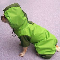 Regenmantel für Hunde - grün, S