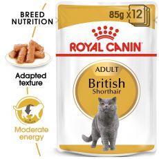 Royal Canin British Shorthair - Frischbeutel, 12 x 85g