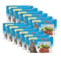 Stuzzy Cat MULTIPACK Kabeljau + Lachs 12 x (4 x 100 g)