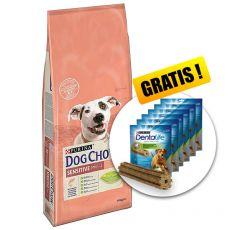 PURINA DOG CHOW SENSITIVE Lachs & Reis 14kg+ GESCHENK