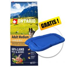 ONTARIO Adult Medium Lamb & Rice 12kg + GESCHENK