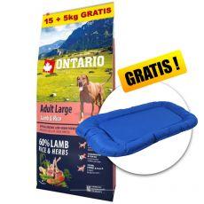 ONTARIO Adult Large - lamb & rice 15+5kg GRATIS+ GESCHENK