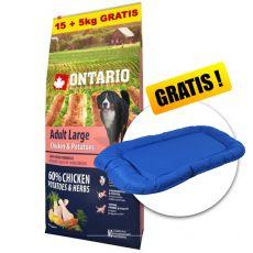 ONTARIO Adult Large - chicken & potatoes 15+5kg GRATIS + GESCHENK