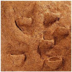 Rückwand für Terrarium KOKOS MODUL 50x50cm