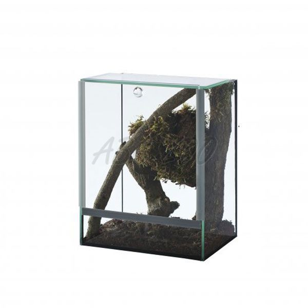 terrarium f r spinnen 15x15x20cm abc zoo. Black Bedroom Furniture Sets. Home Design Ideas