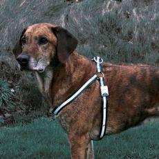 Reflektierendes Hundegeschirr - blinkend, Größe M-L