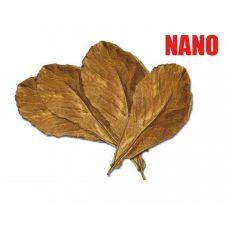 Seemandelbaum - trockene Blätter NANO, 12 Stk.