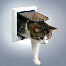 Türchen für Katzen mit einem Tunnel - weiß, 21 x 21 cm